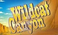 Wildcat Canyon slot game