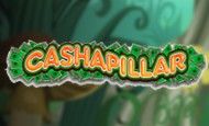 Cashapillar slot game