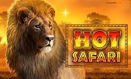 play Hot Safari online slot