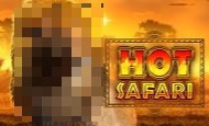 Hot Safari Online Slot