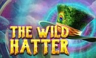 The Wild Hatter Online Slot
