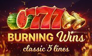 Burning wins online slot